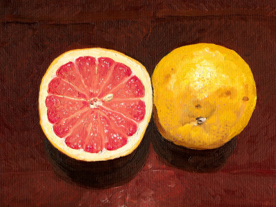 Sliced grapefruit, 8 by 10 inch canvas board