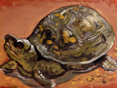 Oil painting of a turtle, 5 by 7 inches oil on canvas